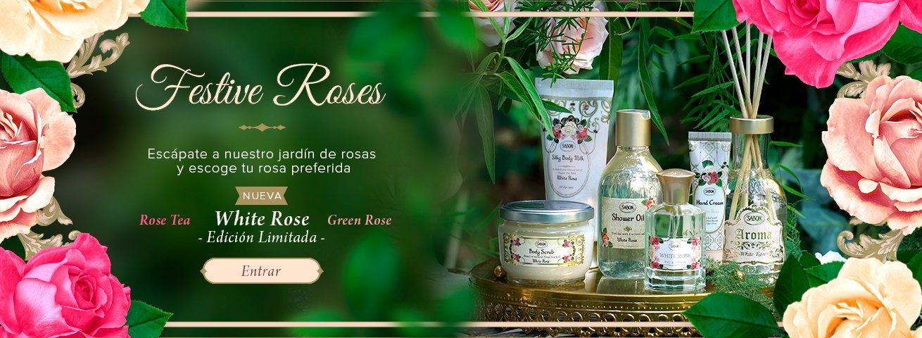 Festive Roses - White Rose: Festive Roses - White Rose